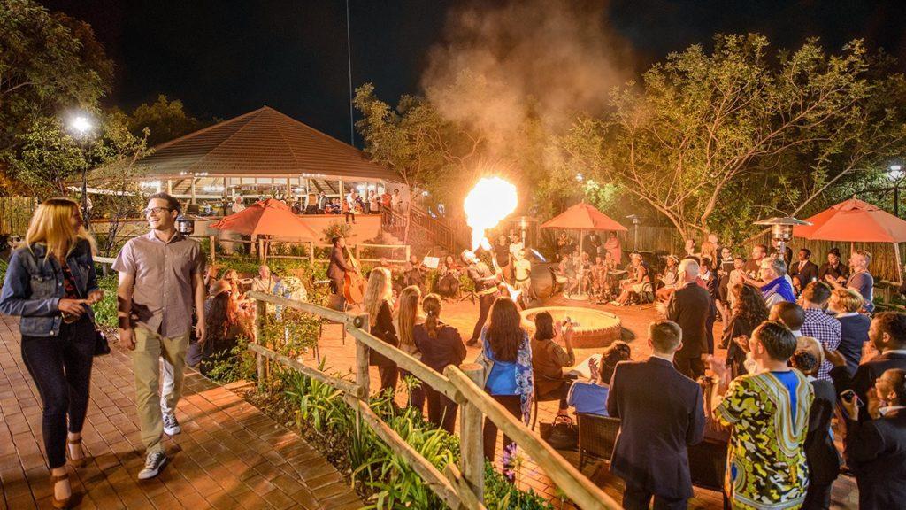 Саентология в Африке: вечер с африканскими шашлыками в день открытия замка Кьялами